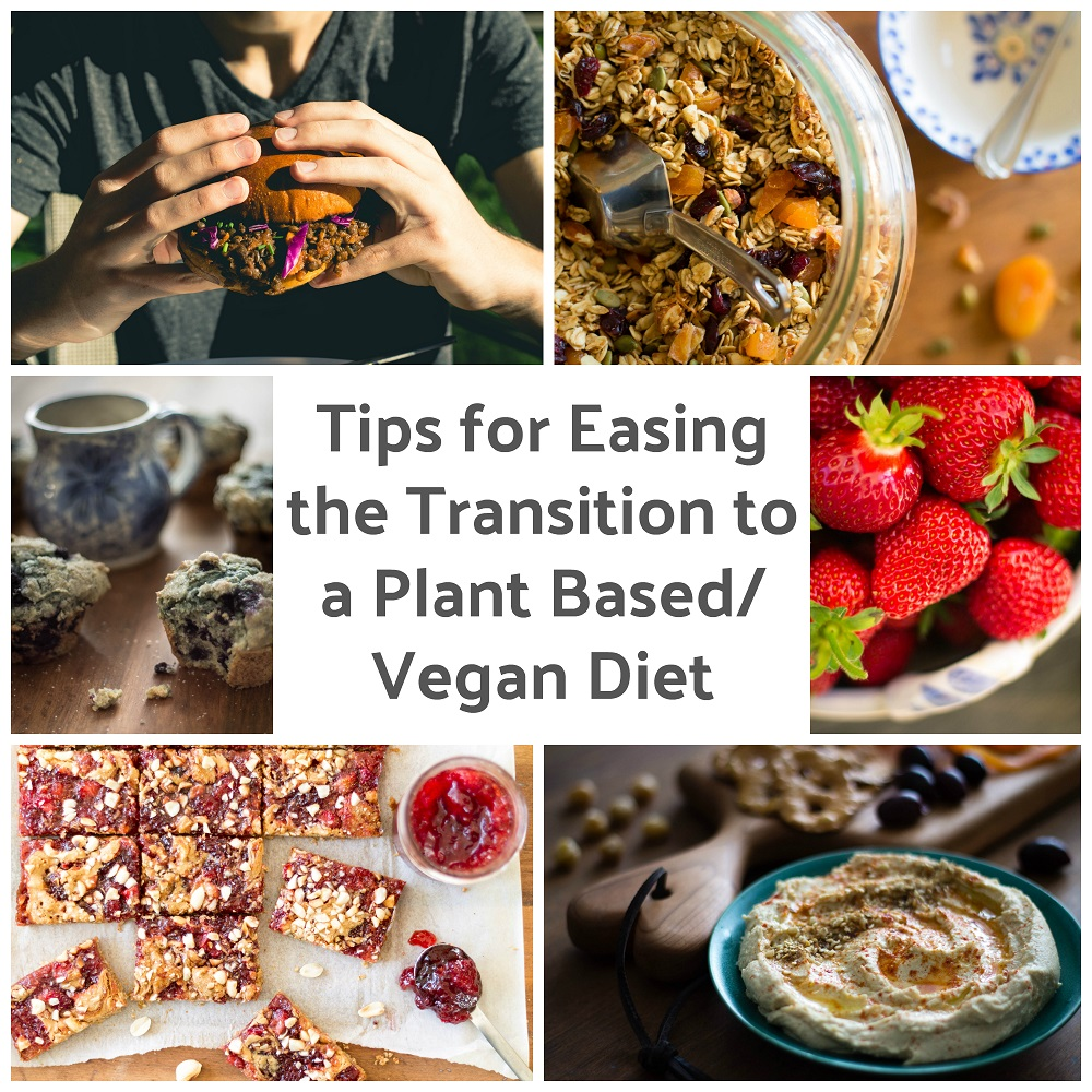 Tips for Easing the Transition to a Plant-Based/Vegan Diet